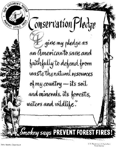 Smokey the Bear - Conservation Pledge 1954 Campaign Illustration